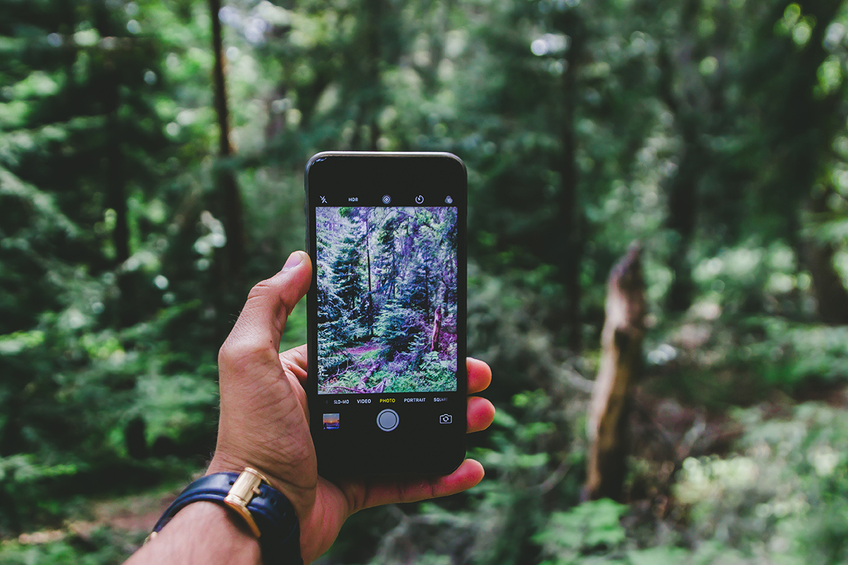 Easy Tips for Mastering iPhone Photography