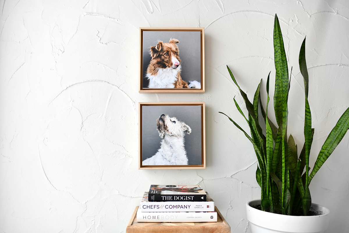 3 Ways to Update Your Walls in 2020