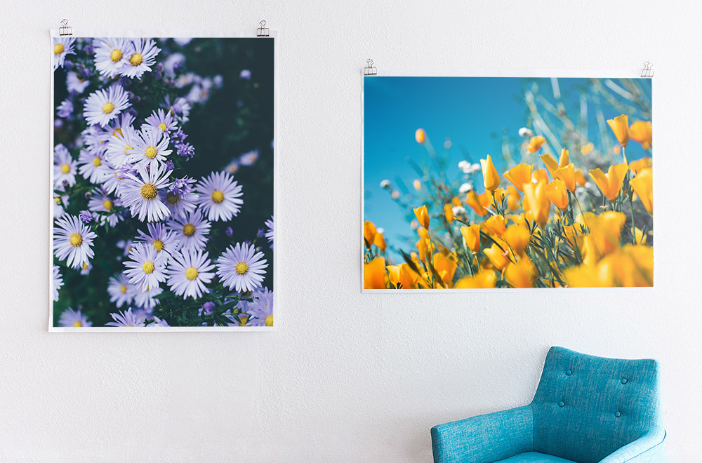 Three Ways to Sell Your Art as Prints & Photo Books