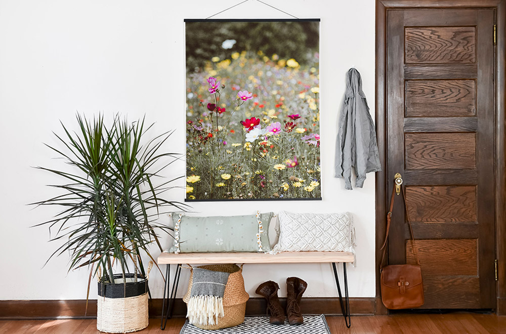 Where to Find Free Photos to Decorate Your Home